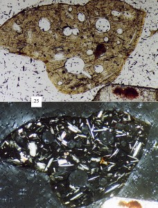 Photomicrograph of a volcanic lithic fragment (sand grain); upper picture is plane-polarized light, bottom picture is cross-polarized light, scale box at left-centre is 0.25 mm.