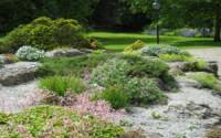 York-Museum-Gardens-Rockery