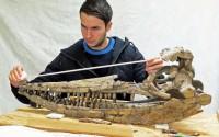 Lomax & ichthyosaur