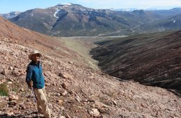UV-B radiation was the terrestrial killer at the Devonian-Carboniferous boundary